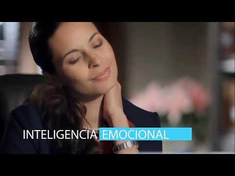 Curso de Principios de la Inteligencia Emocional